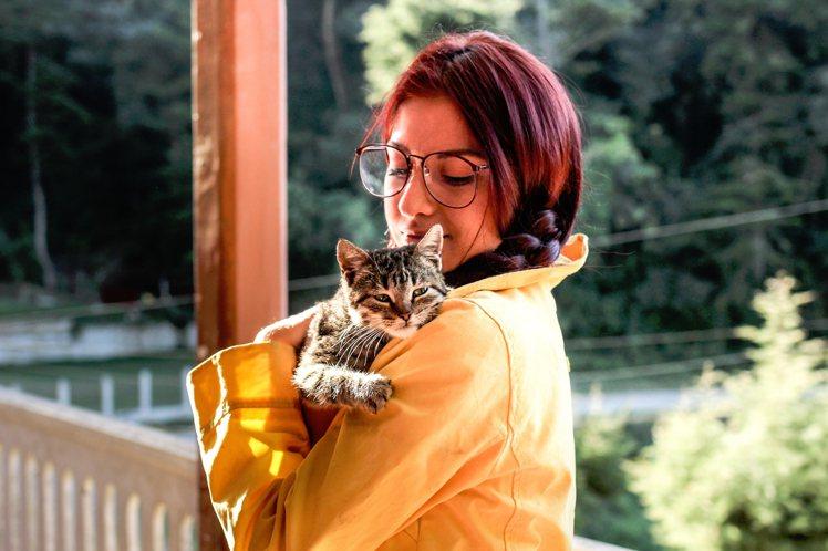當貓奴的人,會想要自己變成貓。圖/摘自Pelexs
