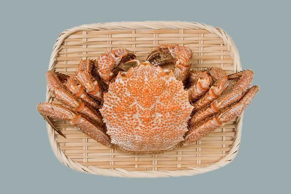 北海道毛蟹是著名的日本名貴食材。 圖片提供/Fooding台灣好食材