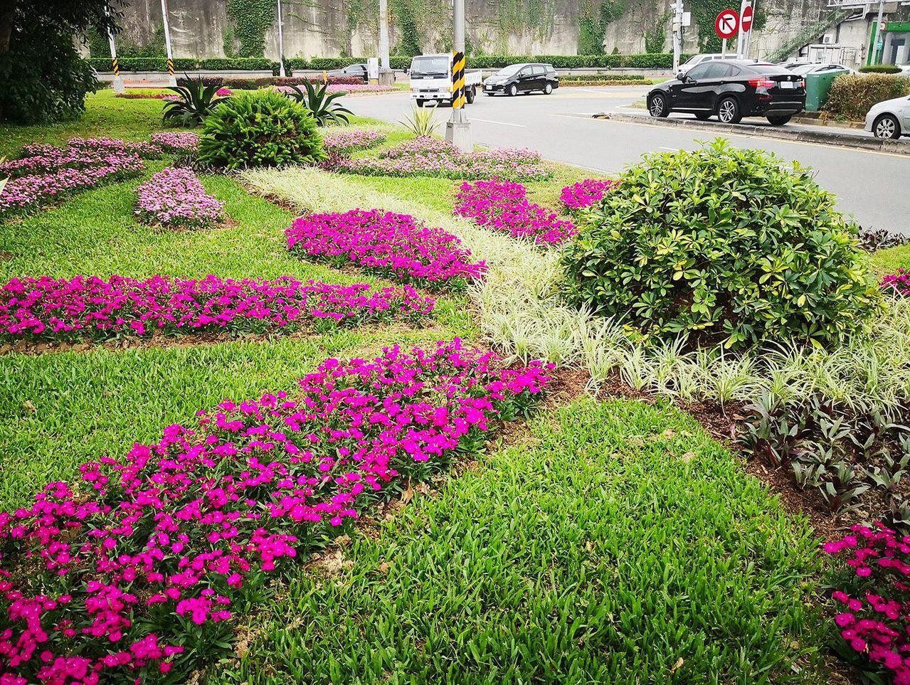 距離台北市大稻埕不遠處的迪化休閒運動公園旁,台北市公園處近期運用各式的植栽花卉,...