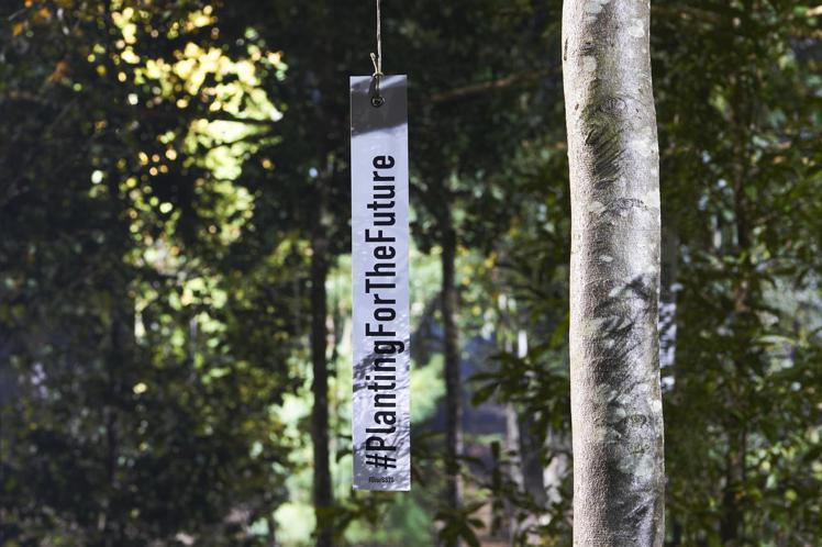秀場以為未來而栽植的樹#PlantingForTheFuture構成。圖/DIO...