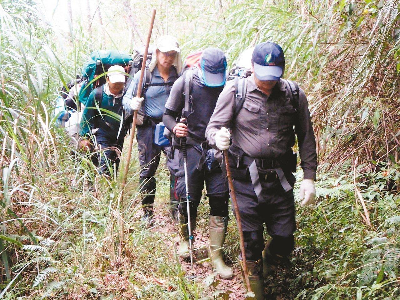 嘉義林管處巡山員每月至少執行四次林班清查,抑制山老鼠盜伐林木。 聯合報系資料照片...
