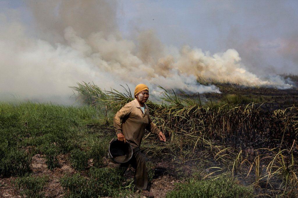 南蘇門答臘一名當地居民嘗試滅火。 圖/路透社