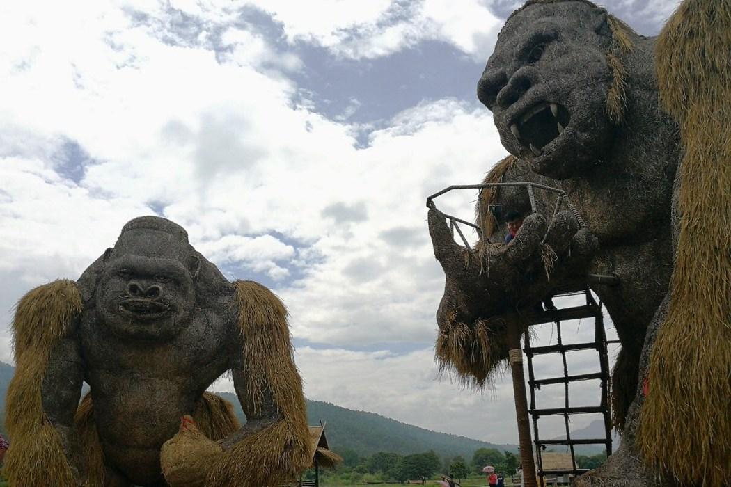 泰國清邁/惠登淘國家公園,爆紅稻草金剛在此!