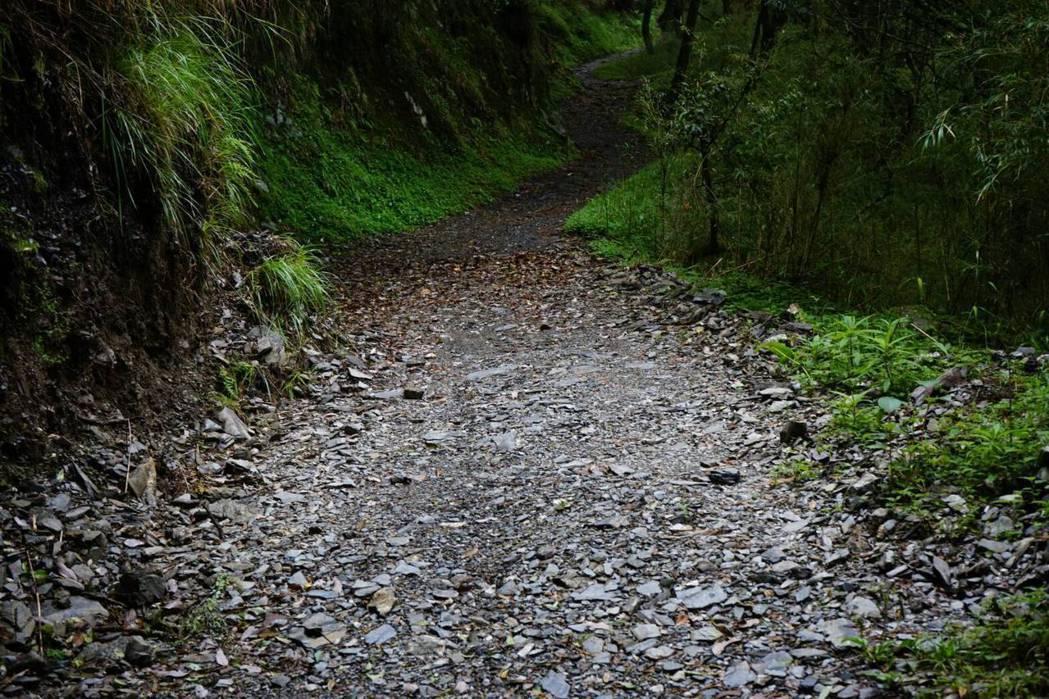 能高越嶺步道是山友最愛前往的路線,山林開放解禁後,山友健行將更為方便。 圖/南投...