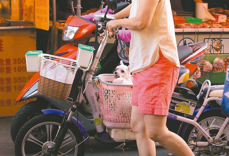 今起駕駛電動自行車超過廿五公里速限、未戴安全帽、擅自改裝車輛,都將挨罰。 圖/聯合報系資料照片