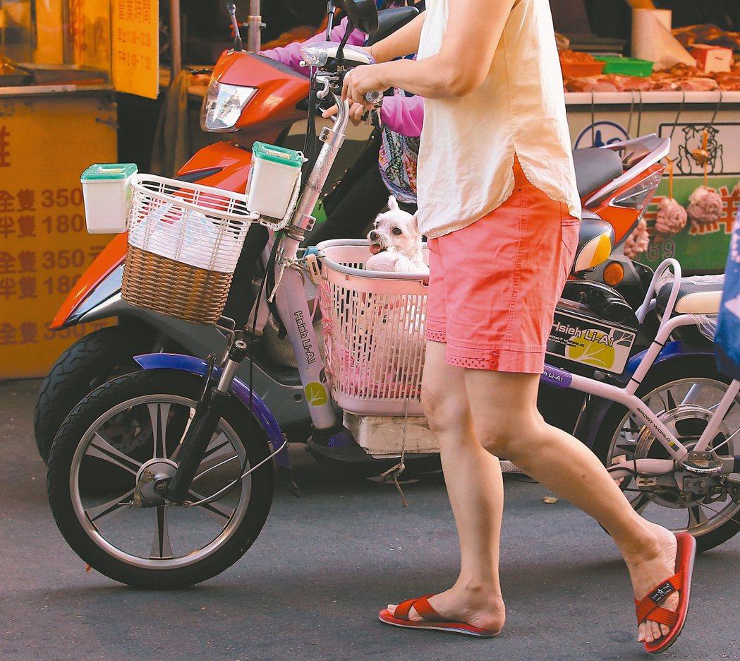 電動自行車 禁擅自改裝 今起駕駛電動自行車超過廿五公里速限、未戴安全帽、擅自改裝...