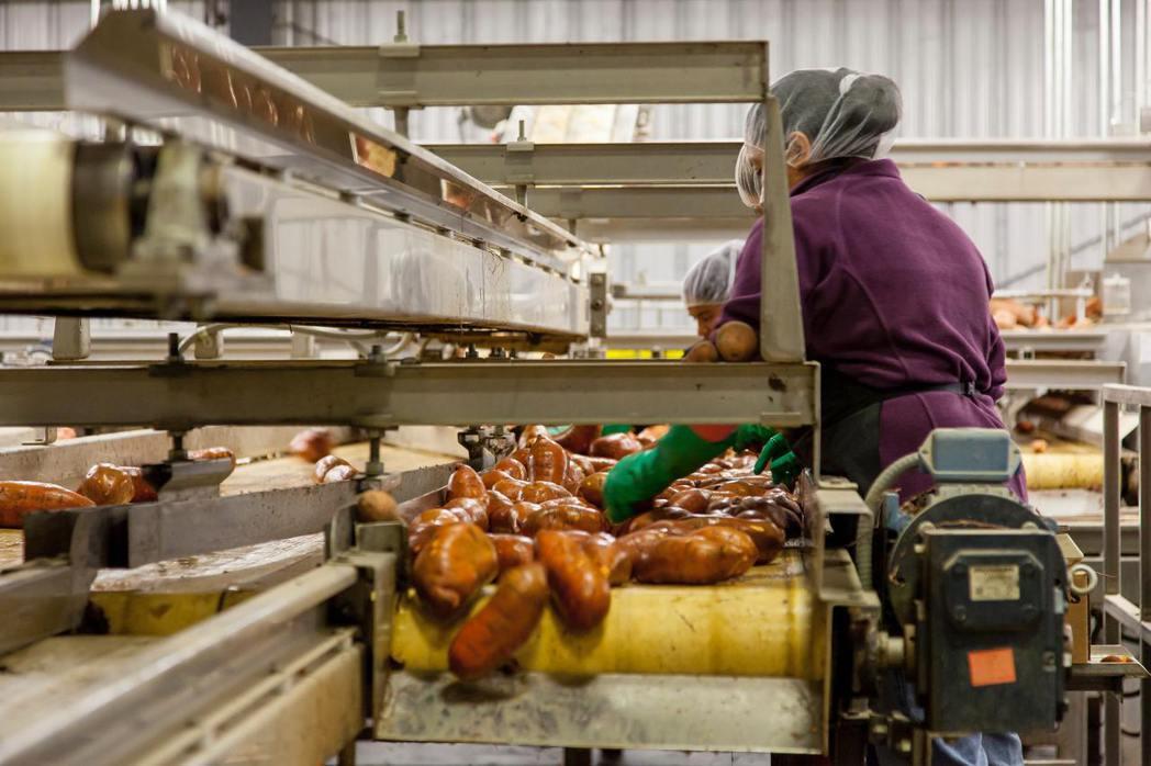 全球每年約有13億噸食物在生產、運送過程,或是料理時被丟棄浪費,家樂福文教基金會...