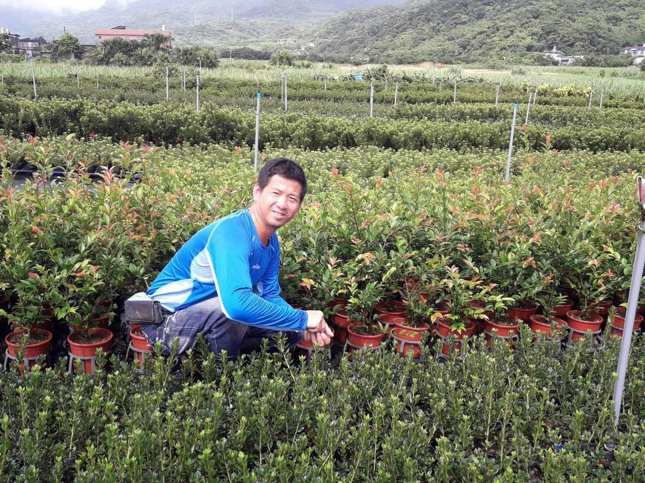 嚴慶榮回鄉接手杜鵑種植,考量存活率及管理效率,將原本裸根種植的方式改為盆花種植。...