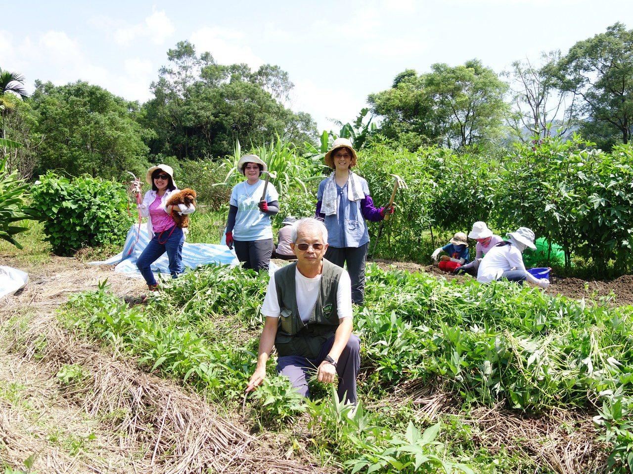 許天麟心繫保育生態環境,因著解說而懂植物,更有機會接觸農田,也是荒野推動油羅田的...