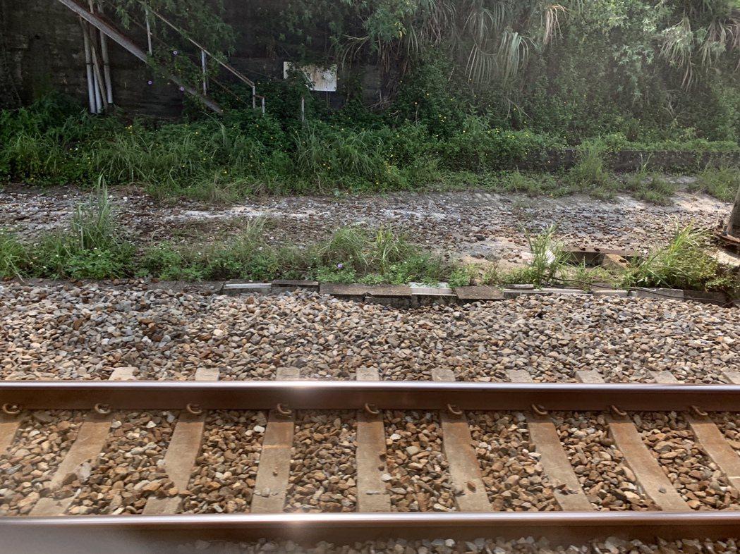 平交道除了鐵軌外,停止線前的網狀標線也不能違規臨停。記者張曼蘋/攝影
