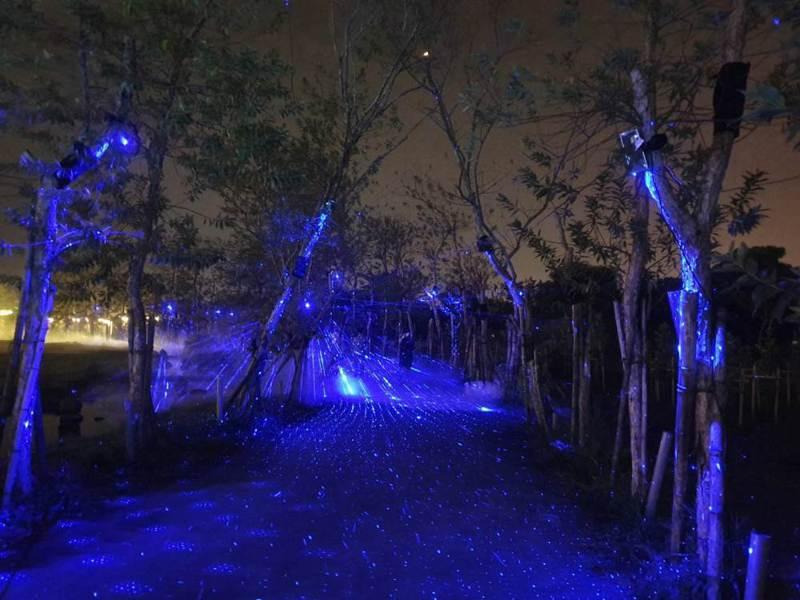 今年首次在屏東的台灣設計展,以「沈浸式」的光影手法,打造全台第一個夜遊光體驗。圖/屏東縣政府提供