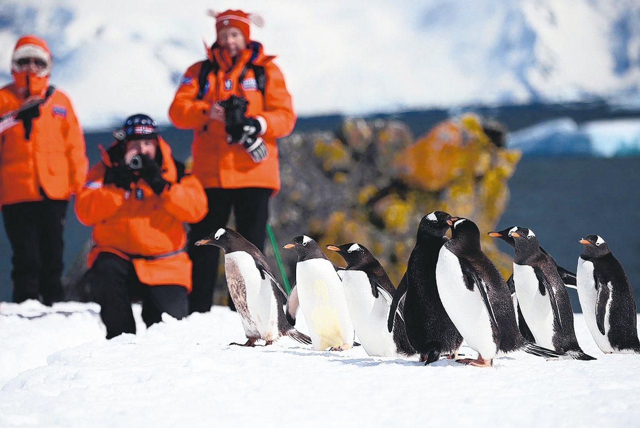 雄獅獨包「海精靈號」2020將前進南極。 圖/Poseidon Expediti...
