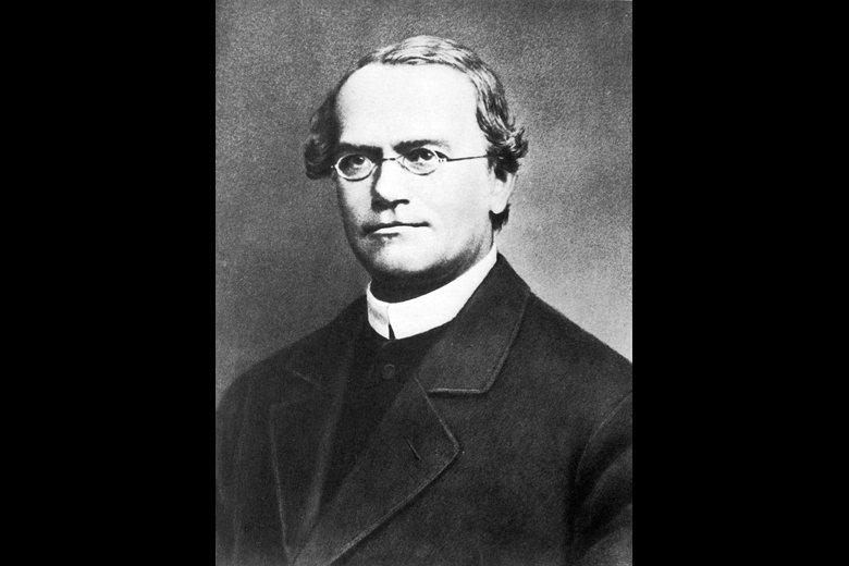 孟德爾,奧地利遺傳學家,遺傳學奠定人。 圖/維基共享