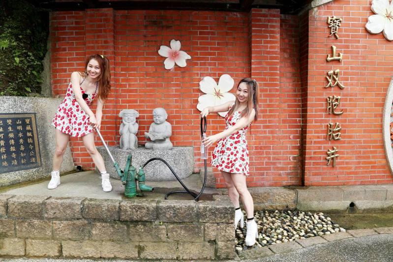 寶山村新湖路與寶山路交叉處有座水井,相傳喝了井水就容易生出雙胞胎或多胞胎,因而有「雙胞胎井」的美名。圖/寶山香菇公所提供