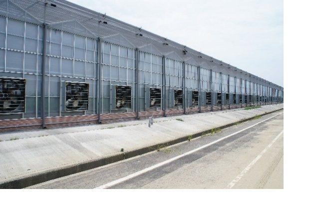 強調結構高堅固性的花王農業器具以鋼骨加強型溫室作為展示重點  博聞台灣/提供