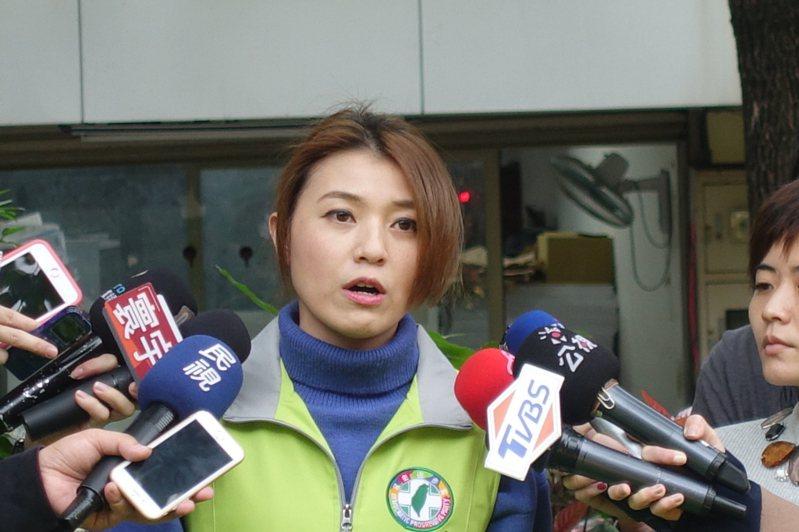 民進黨發言人顏若芳。圖/聯合報系資料照