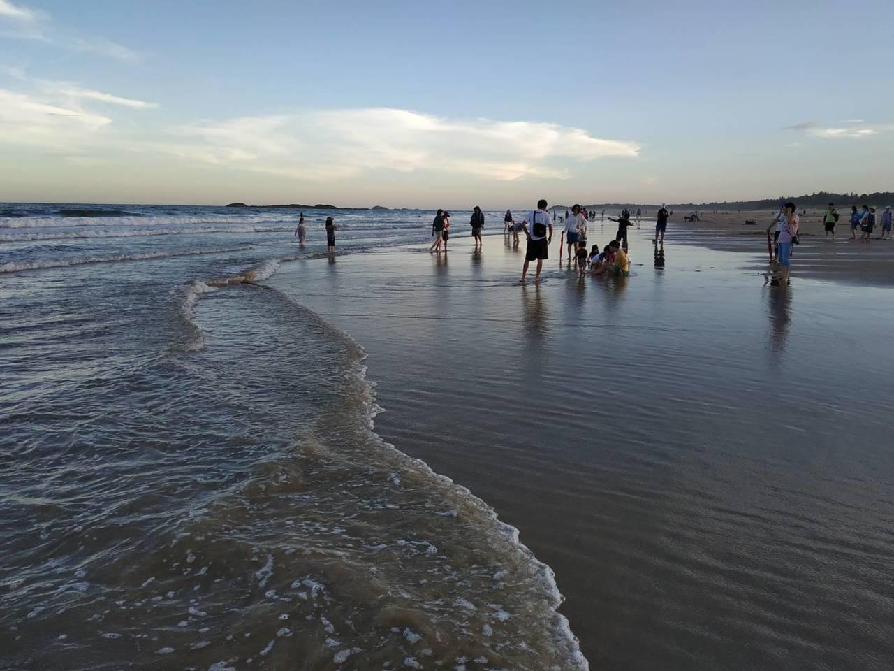金門的花蛤產量多,每年夏天海邊都會擠滿遊客忙著挖花蛤。記者蔡家蓁/攝影