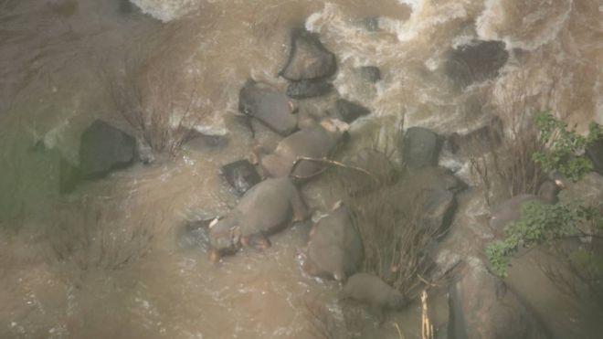 泰國考艾國家公園5日發生一起意外,一隻幼象滑落瀑布下,想救牠的五隻大象也跟著全都...