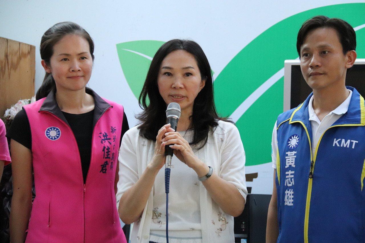 李佳芬大讚立委參選人黃志雄(右)斯文有才華,並懇請鄉親全力相挺。記者胡瑞玲/攝影