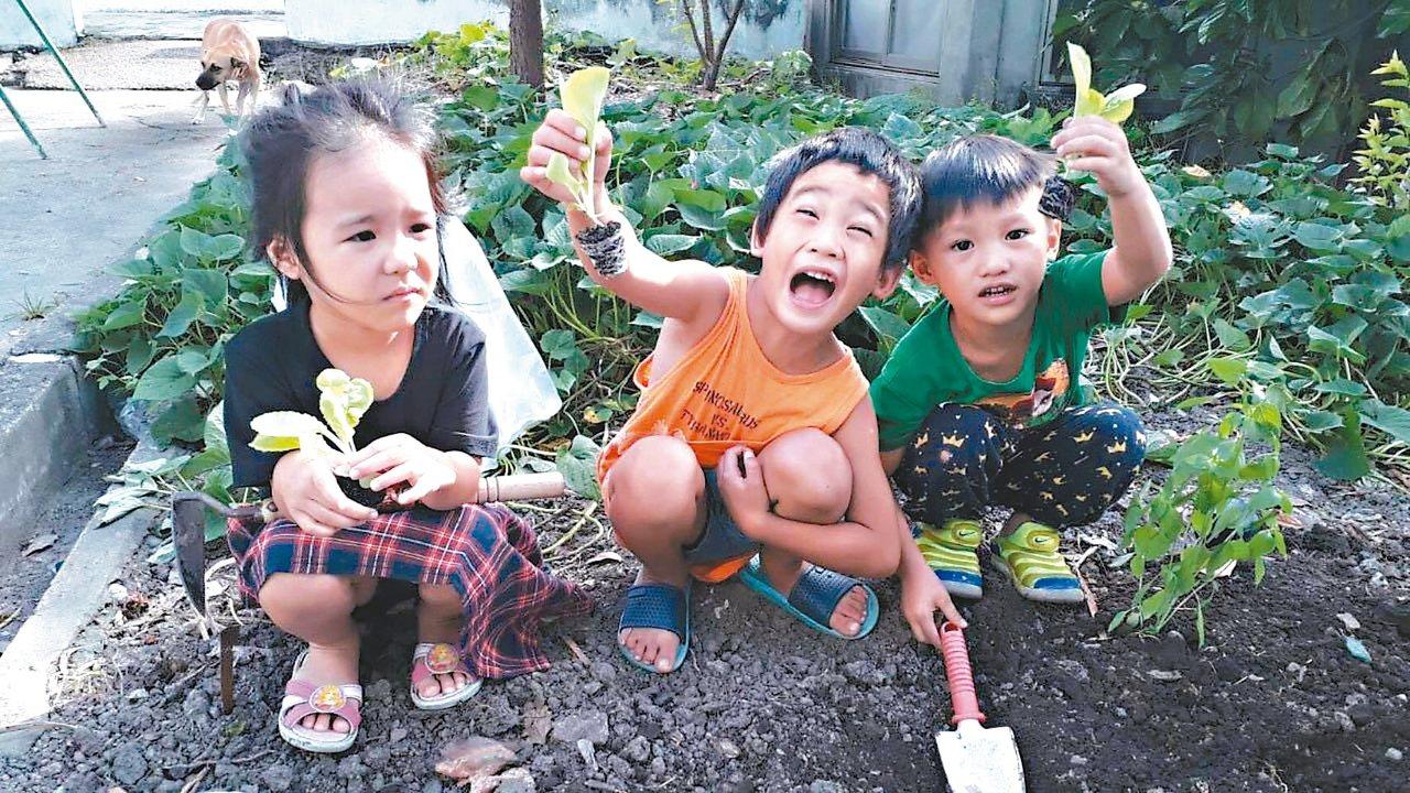 體制外的全阿美語幼兒園(Pinanaman)九月啟用,擁有全母語的學習環境。 圖...