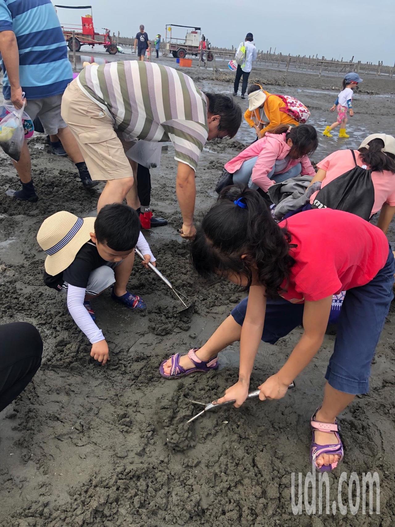 彰化縣擁有台灣西海岸最長潮間帶,假日都有很多親子到海邊體驗採蚵樂。記者何烱榮/攝...