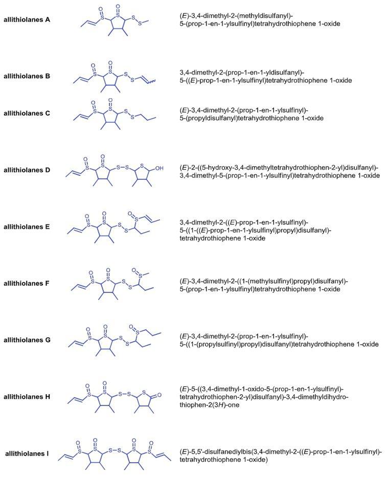 造成洋蔥苦味的來源是9種硫化物「allithiolanes」。 圖片提供/食力(...