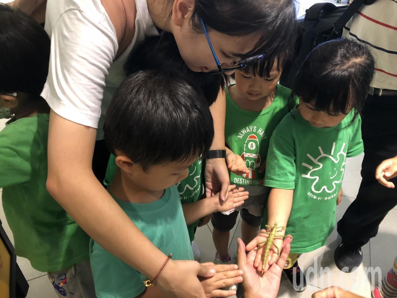 遠東集團昨邀請新竹地區三間幼兒園與東門國小五年級學童,近距離體會、觀賞各類型竹節...