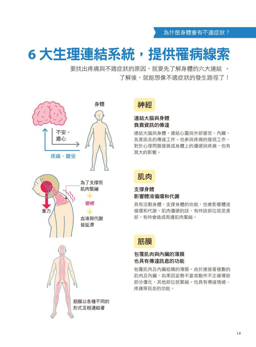 圖/摘自《肌筋膜‧經絡穴位‧激痛點,對症手療身體疼痛地圖全書》