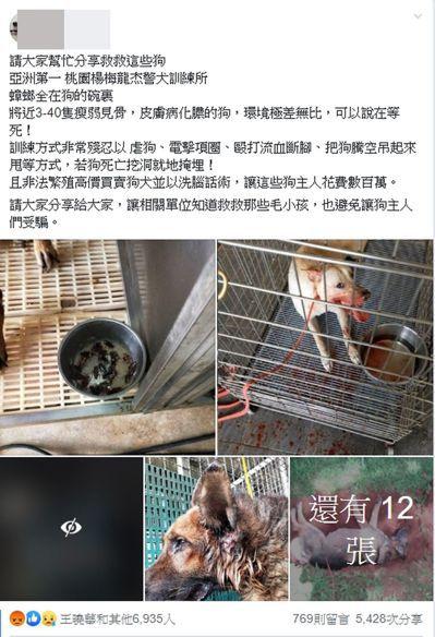 網友PO網爆料,貼出照片及影片,指控桃園楊梅一處警犬學校虐狗。圖/翻攝自網路