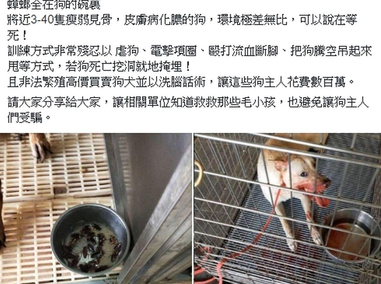 網友PO網爆料貼出照片及影片,指控桃園楊梅一處警犬學校虐狗。圖/翻攝自網路