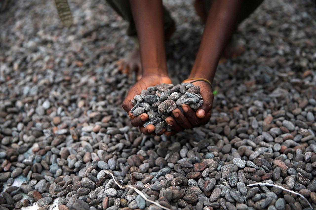 民間組織「綠色美國」針對巧克力大廠在消除童工現象和停止砍伐森林上的努力,進行評比...