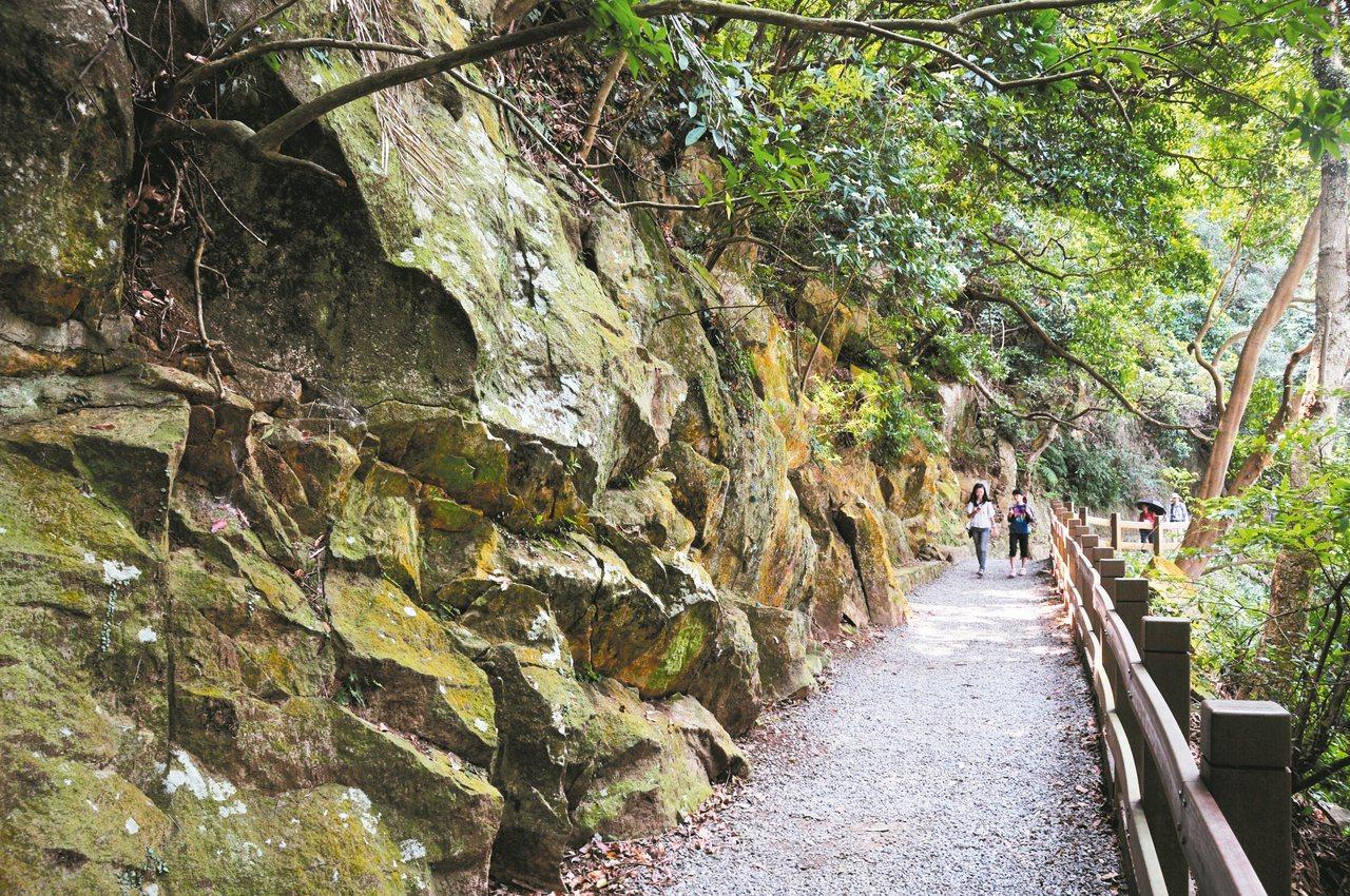 天母古道是陽明山國家公園南緣的熱門步道之一,最精華的一段平坦又好走。 圖/邱德祥...