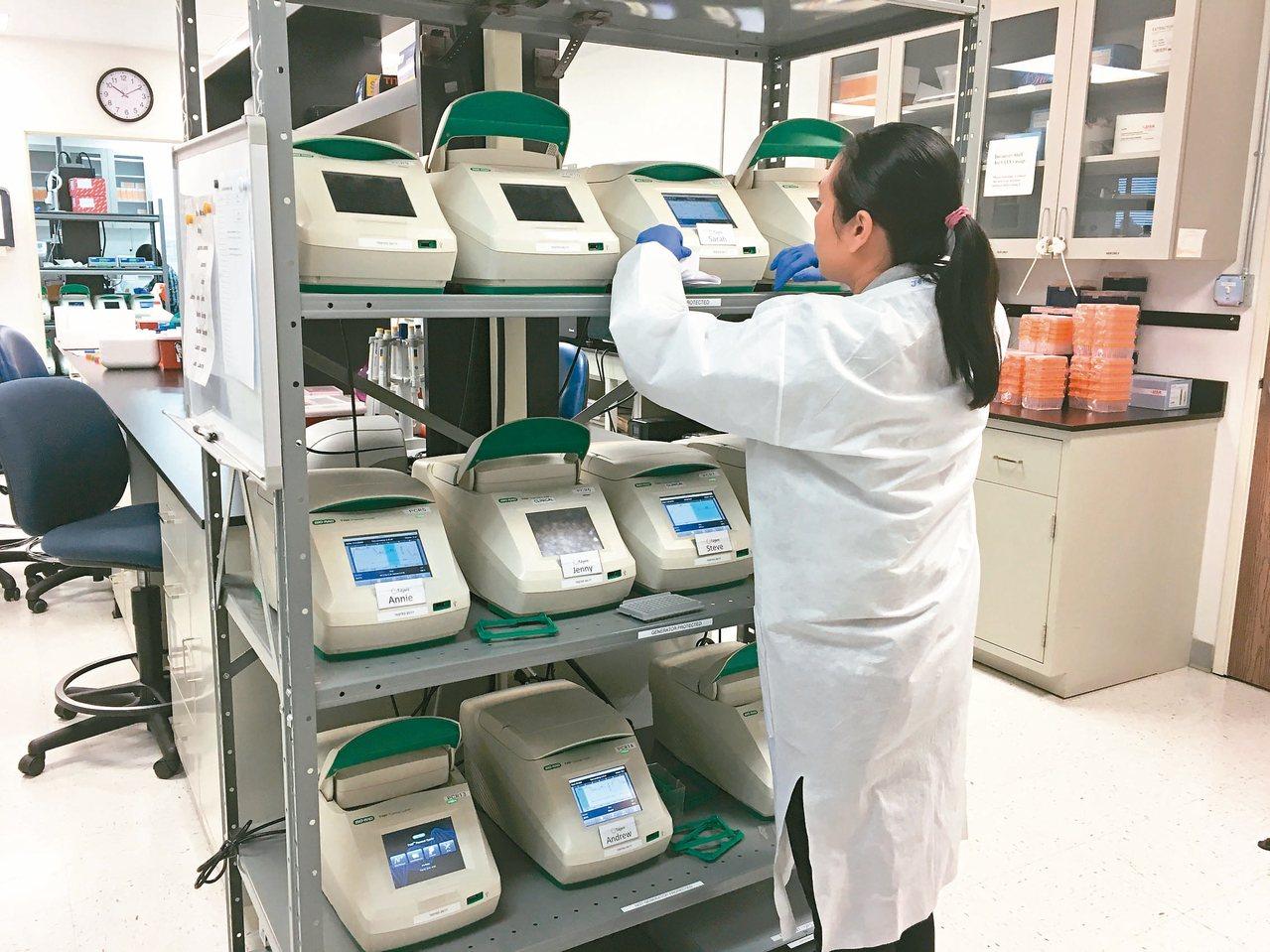 基因檢測成為科學算命,亂象叢生,衛福部控管檢測項目。圖為基因檢測實驗室。 圖/聯...