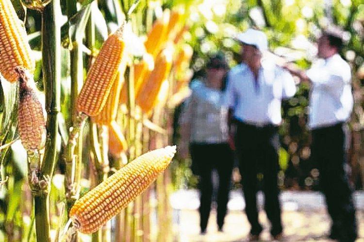 拉丁美洲國家貨幣近來止穩向上,政局也逐漸穩定,經理人看好農業、原物料及能源表現,...