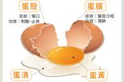 不只蛋黃有營養 從《本草綱目》看雞蛋4部分功效