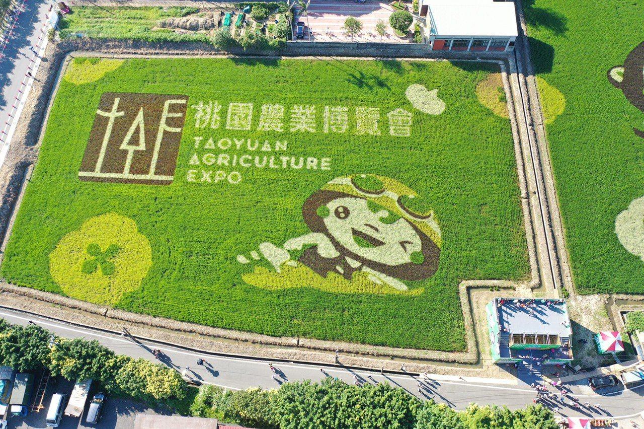 桃園農業博覽會如火如荼開展,農博一大亮點變是彩繪稻田區,今年配合全運會賽事,將桃...