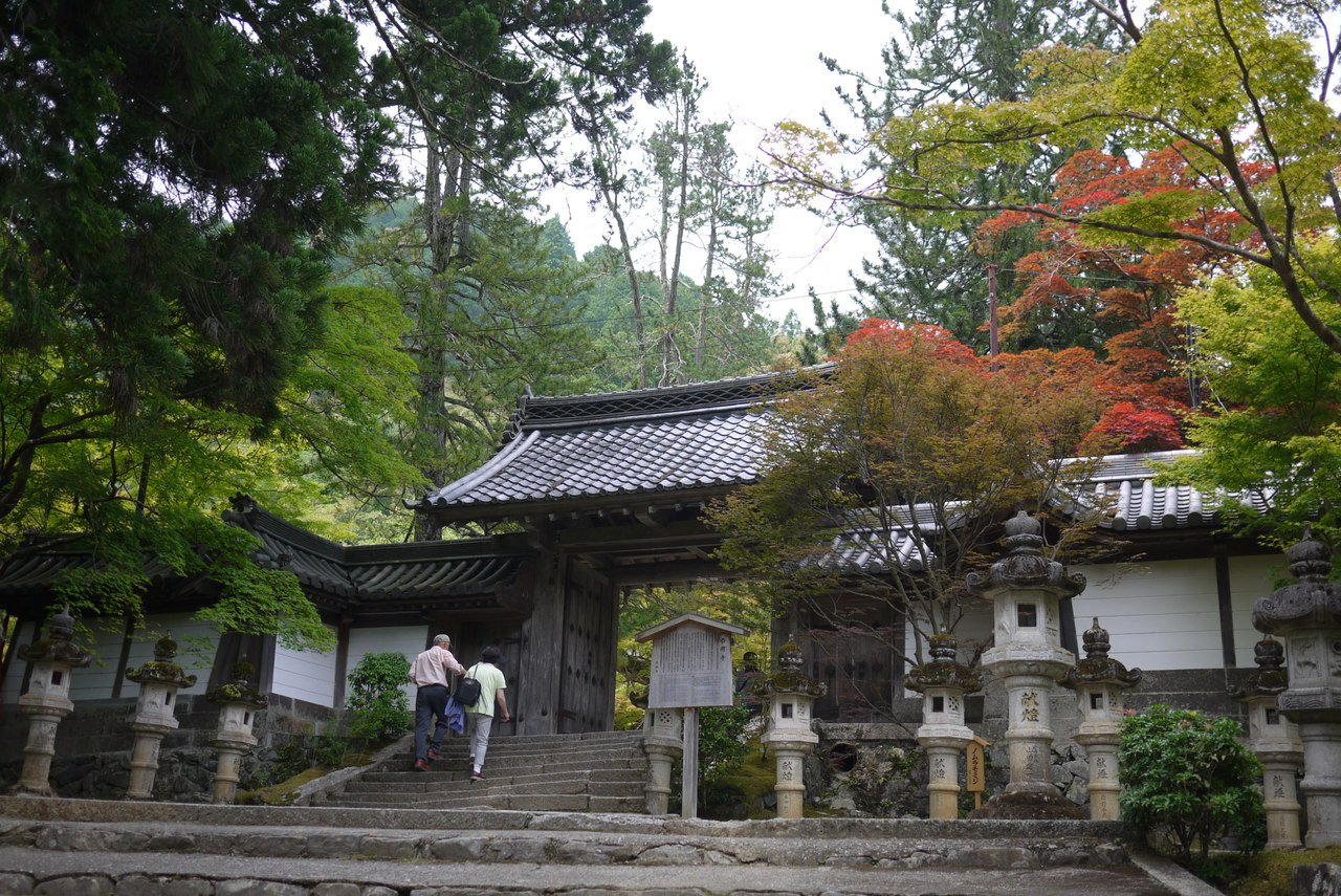 西明寺境內種有數百株高雄楓。圖/京都市台灣推廣事務所提供