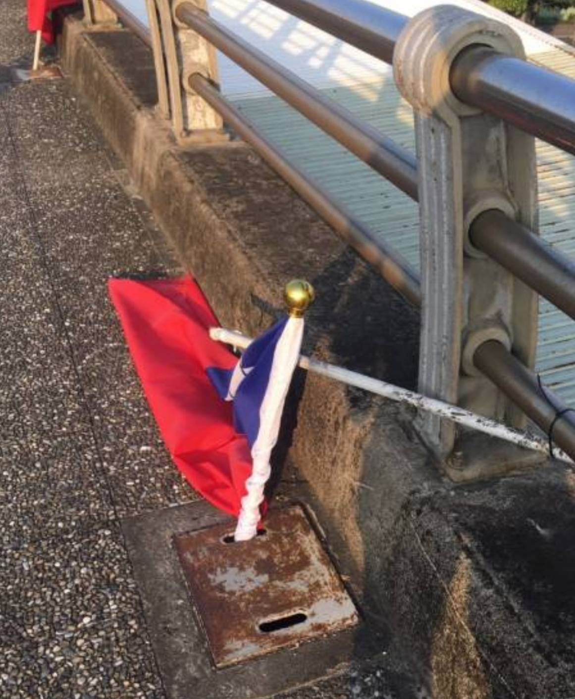 國旗不僅被林姓男子折毀,還插水溝中。記者柯毓庭/翻攝