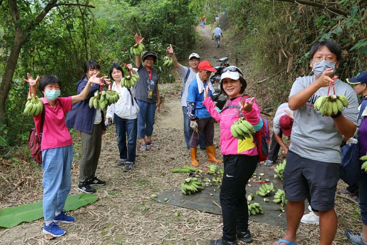 高雄市政府農業局安排一場農夫體驗泥岩惡地地質公園系列活動,參觀香蕉園,採香蕉。圖...
