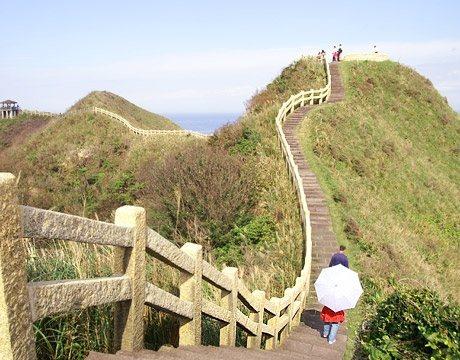 鼻頭角步道是一條充滿知性的健行路線,遊客可藉由觀察鼻頭角特有的景觀,及各種差異侵...