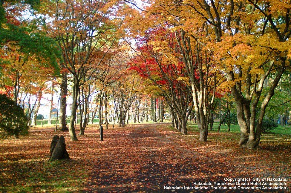 函館紅葉景點 香雪園