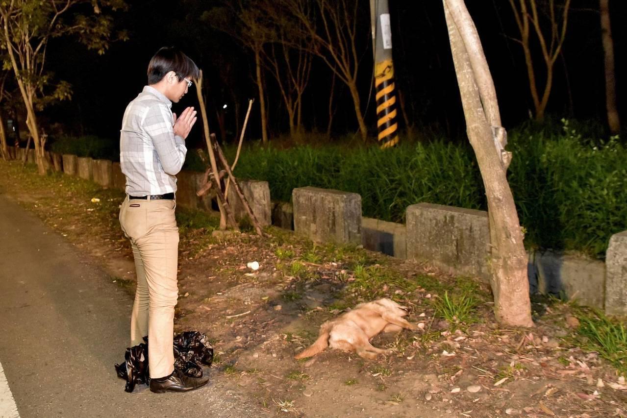 嘉市動物守護協會每月處理縣市20件路殺犬貓屍,尊嚴善後,火化處理。圖/吳育才 提...