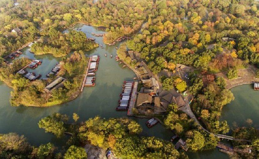 馬雲捐4.4億保護西溪濕地。圖/澎湃新聞