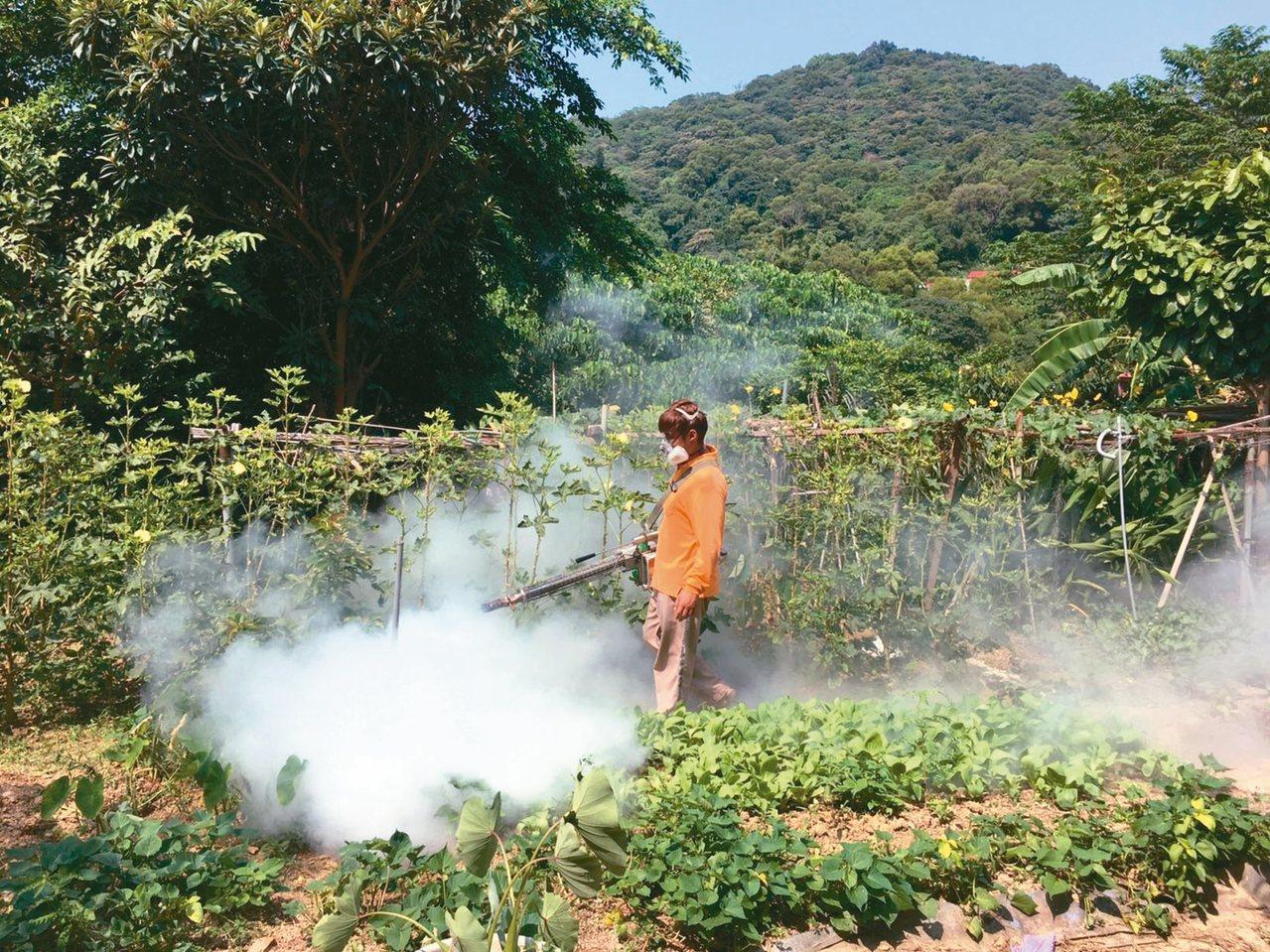 衛生局派員定期針對樹林區坡內里登革熱風險菜園藥物噴消。 圖/新北市衛生局提供
