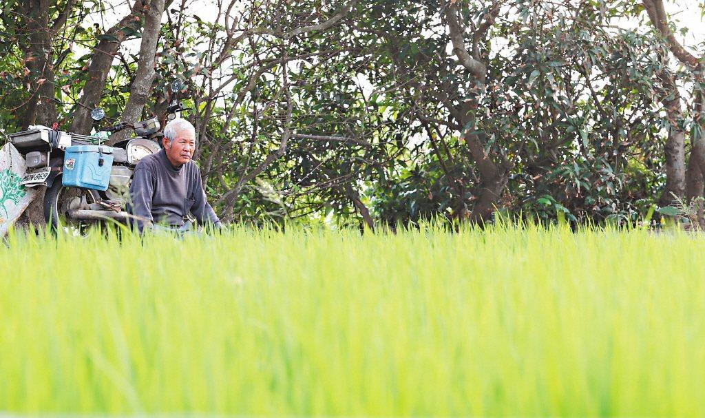 農委會擬直接在農保增設年金,農民退休後可同時領老農津貼和農民年金,每月可領一點五...