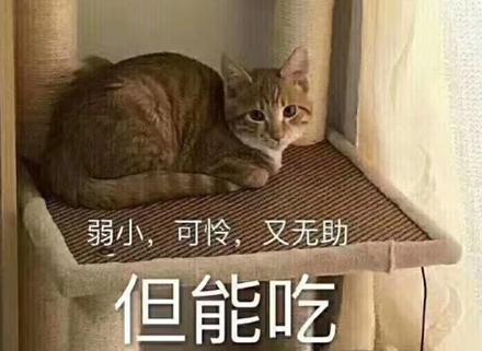 圖片來源/氾見志