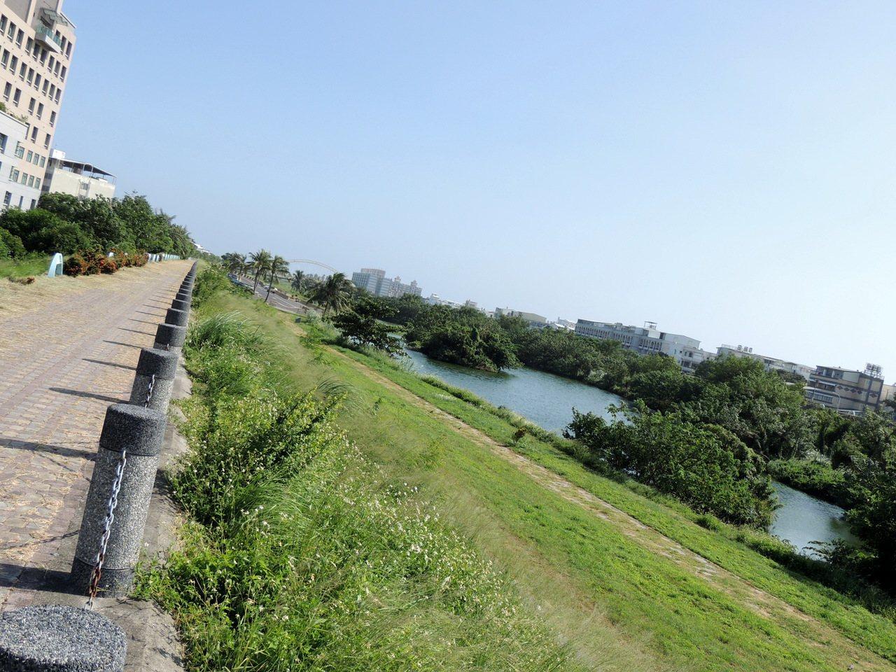 台東市大平溪人工濕地復育有成,不僅是市民喜愛的休憩場所,也吸引不少鳥類棲息。記者...