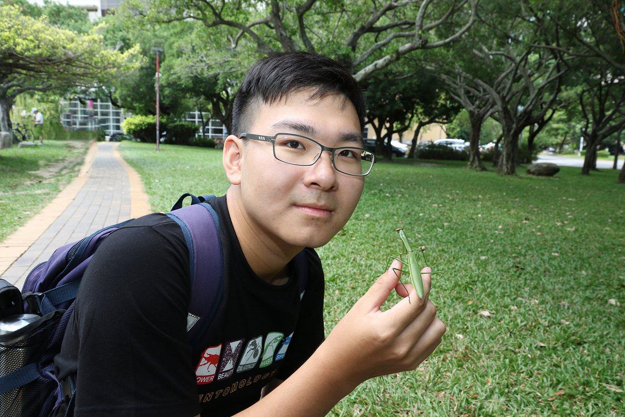 興大昆蟲系王遠騰5歲開始養螳螂,高二抓到台灣罕見「狹翅大刀螳」,他宛如一本「螳螂...