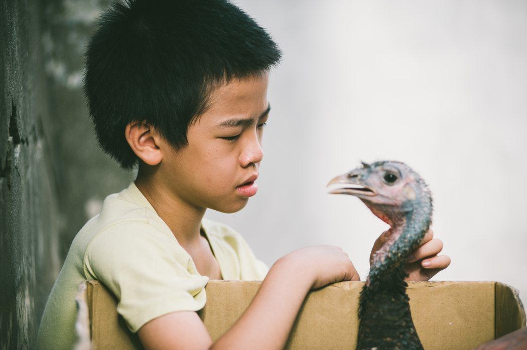 童星李英銓以「那個我最親愛的陌生人」角逐金馬獎最佳男配角。圖/金馬執委會提供