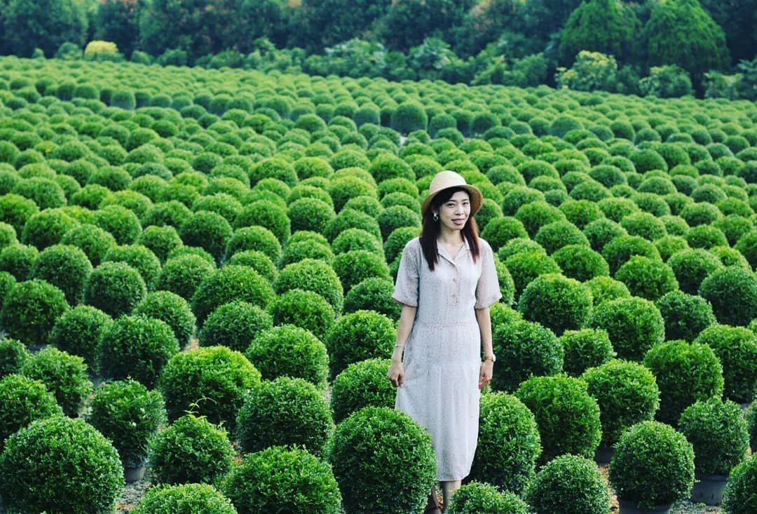 圖/IG網友yuxuan_shi0619授權